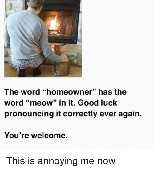 """Funny, Good, and Word: The word """"homeowner"""" has the  word """"meow"""" in it. Good luck  pronouncing it correctly ever again.  You're welcome."""