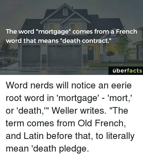 25+ Best Memes About French Word | French Word Memes