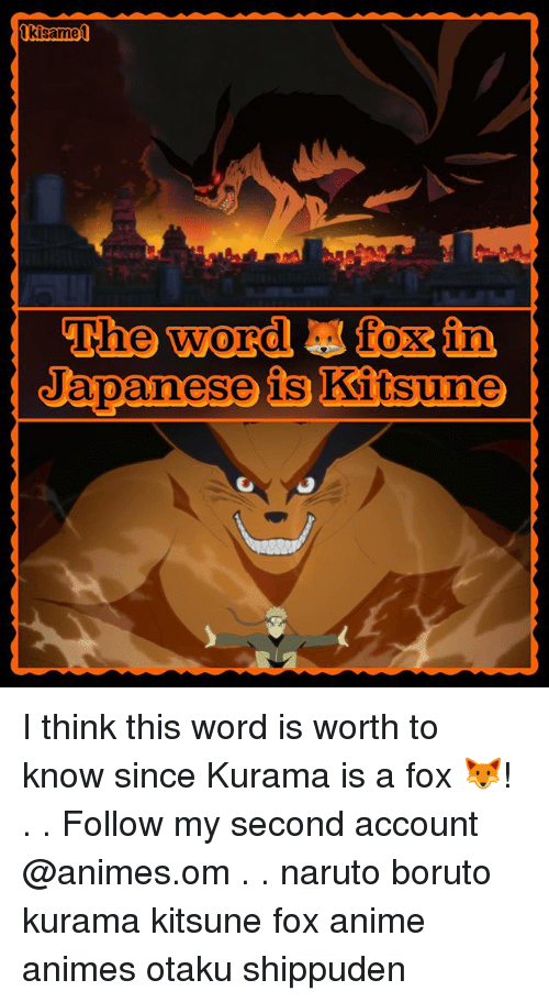 Anime, Memes, and Naruto: The wordfoxin  Japanese is Kitsune  sune I think this word is worth to know since Kurama is a fox 🦊! . . Follow my second account @animes.om . . naruto boruto kurama kitsune fox anime animes otaku shippuden