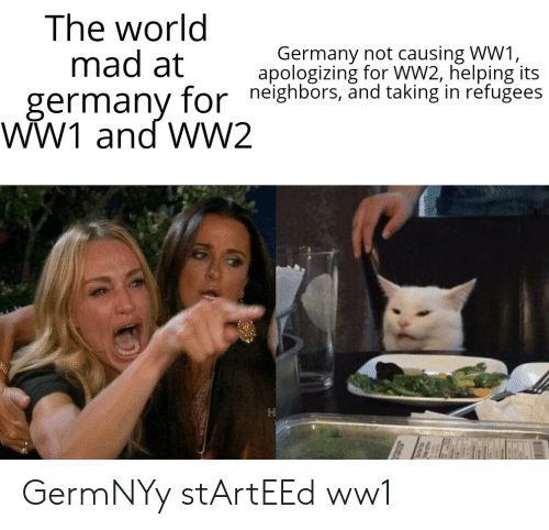 Germany, History, and Neighbors: The world  mad at  germany for neighbors, änd taking in refugees  WW1 and WW2  Germany not causing WW1,  apologizing for WW2, helping its GermNYy stArtEEd ww1
