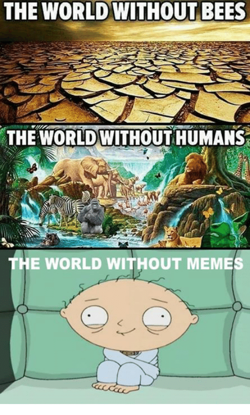 Meme Memes And World THE WORLD WITHOUT BEES WORLDWITHOUT HUMANS