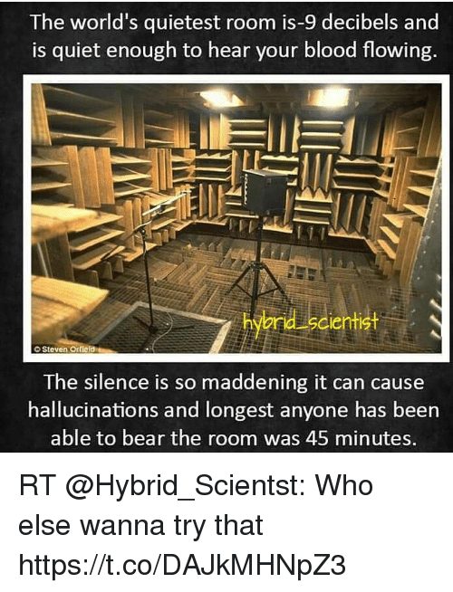 The World\'s Quietest Room Is-9 Decibels and S Quiet Enough to Hear ...