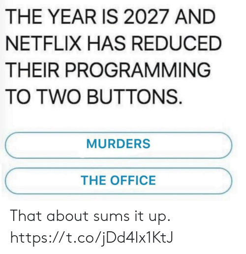 Funny, Netflix, and The Office: THE YEAR IS 2027 AND  NETFLIX HAS REDUCED  THEIR PROGRAMMING  TO TWO BUTTONS  MURDERS  THE OFFICE That about sums it up. https://t.co/jDd4Ix1KtJ