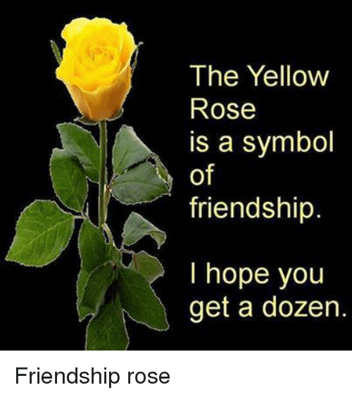 The yellow rose is a symbol of friendship i hope you get a for What color is the friendship rose