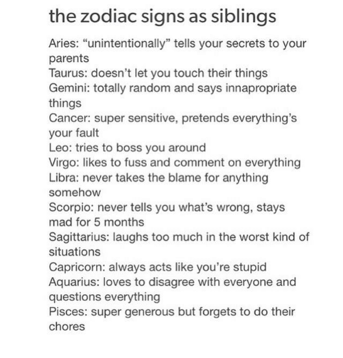 The Zodiac Signs as Siblings Aries Unintentionally Tells Your