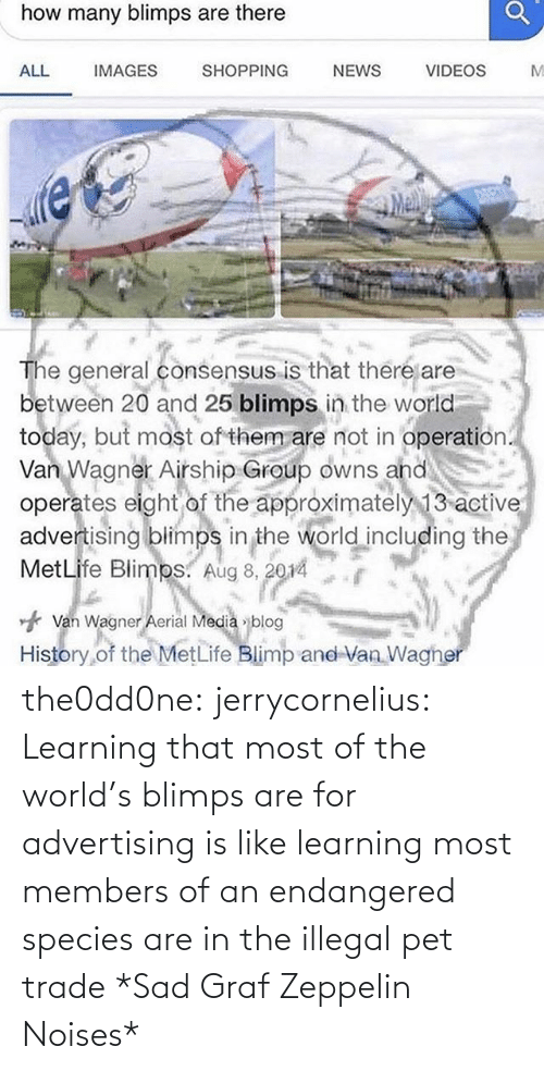 Tumblr, Blog, and World: the0dd0ne:  jerrycornelius:   Learning that most of the world's blimps are for advertising is like learning most members of an endangered species are in the illegal pet trade   *Sad Graf Zeppelin Noises*