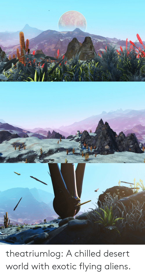 Tumblr, Aliens, and Blog: theatriumlog:  A chilled desert world with exotic flying aliens.