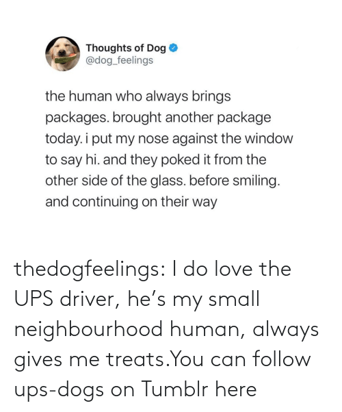 Dogs, Love, and Target: thedogfeelings:  I do love the UPS driver, he's my small neighbourhood human, always gives me treats.You can follow ups-dogs on Tumblr here