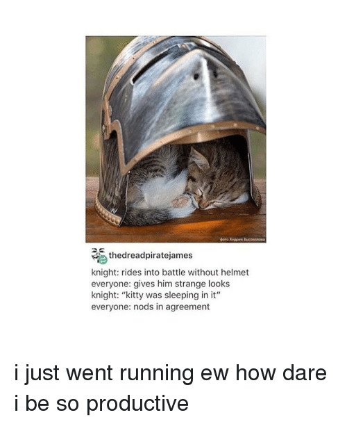 "Kitties, Memes, and Run: thedreadpiratejames  knight: rides into battle without helmet  everyone: gives him strange looks  knight: ""kitty was sleeping in it""  everyone: nods in agreement i just went running ew how dare i be so productive"