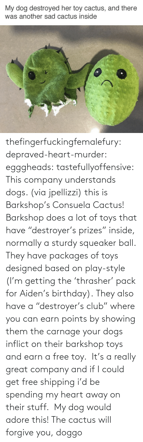 """Birthday, Club, and Dogs: thefingerfuckingfemalefury:  depraved-heart-murder:  egggheads:  tastefullyoffensive: This company understands dogs. (via jpellizzi) this is Barkshop's Consuela Cactus! Barkshop does a lot of toys that have""""destroyer's prizes"""" inside, normally a sturdy squeaker ball. They have packages of toys designed based on play-style (I'm getting the'thrasher' pack for Aiden's birthday). They also have a""""destroyer's club"""" where you can earn points by showing them the carnage your dogs inflict on their barkshop toys and earn a free toy. It's a really great company and if I could get free shipping i'd be spending my heart away on their stuff.  My dog would adore this!  The cactus will forgive you, doggo"""