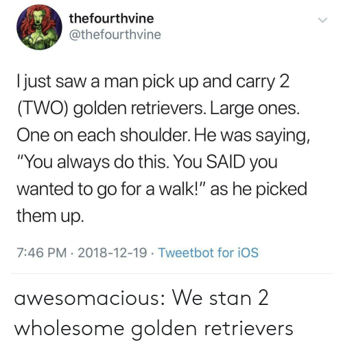 "Saw, Stan, and Tumblr: thefourthvine  @thefourthvine  I just saw a man pick up and carry 2  IWO) golden retrievers. Large ones  One on each shoulder. He was saying,  ""You always do this. You SAID you  wanted to go for a walk!"" as he picked  them up  7:46 PM 2018-12-19 Tweetbot for ioS awesomacious:  We stan 2 wholesome golden retrievers"