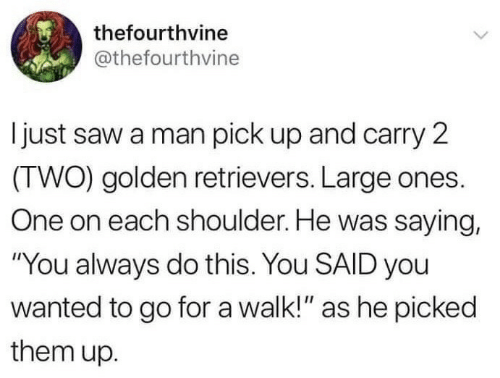 "Saw, Wanted, and One: thefourthvine  @thefourthvine  I just saw a man pick up and carry 2  (TWO) golden retrievers. Large ones.  One on each shoulder. He was saying,  ""You always do this. You SAID you  wanted to go for a walk!"" as he picked  them up."