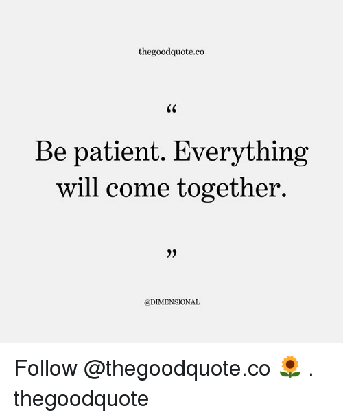 Memes, Patient, and 🤖: thegoodquote.co  Be patient. Everything  will come together.  @DIMENSIONAL Follow @thegoodquote.co 🌻 . thegoodquote