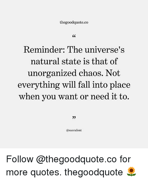 Fall, Memes, and Quotes: thegoodquote.co  GC  Reminder: The universe's  natural state is that of  unorganized chaos. Not  everything will fall into place  when vou want or need it to.  @succulent Follow @thegoodquote.co for more quotes. thegoodquote 🌻