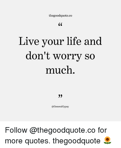 Life, Memes, and Live: thegoodquote.co  Live your life and  don't worrv so  much  @GeneralGypsy Follow @thegoodquote.co for more quotes. thegoodquote 🌻