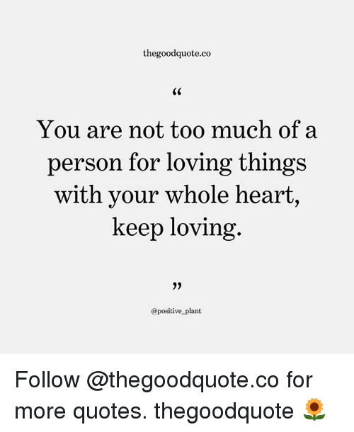 Memes, Too Much, and Heart: thegoodquote.co  You are not too much of a  person for loving thing:s  with your whole heart,  keep loving  @positive plant Follow @thegoodquote.co for more quotes. thegoodquote 🌻