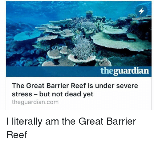 stress on ecosystems great barrier reef The great barrier reef is the other environmental pressures on the reef and its ecosystem affirming that benthic corals are vulnerable to thermal stress.