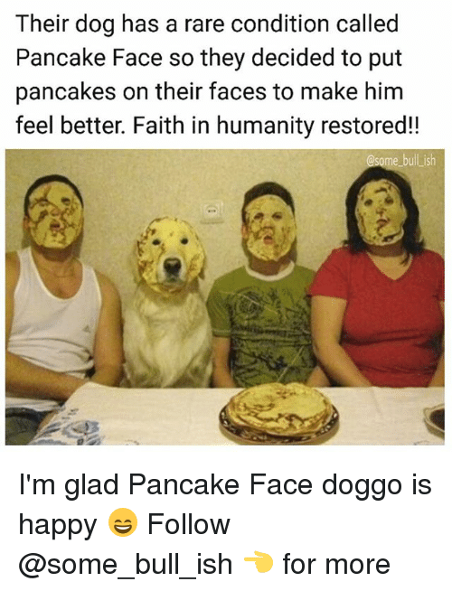 Memes, Happy, and Faith: Their dog has a rare condition called  Pancake Face so they decided to put  pancakes on their faces to make him  feel better. Faith in humanity restored!!  ome bull ish I'm glad Pancake Face doggo is happy 😄 Follow @some_bull_ish 👈 for more