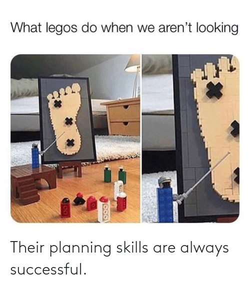 Always, Their, and Skills: Their planning skills are always successful.