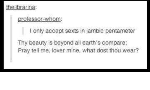 thelibrarina professor whom i only accept sexts in iambic pentameter
