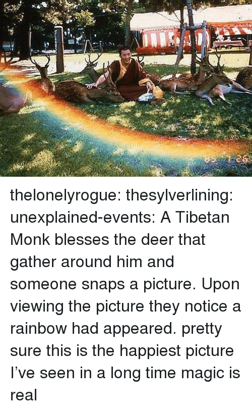 Deer, Tumblr, and Blog: thelonelyrogue:   thesylverlining:  unexplained-events:  A Tibetan Monk blesses the deer that gather around him and someone snaps a picture. Upon viewing the picture they notice a rainbow had appeared.  pretty sure this is the happiest picture I've seen in a long time  magic is real