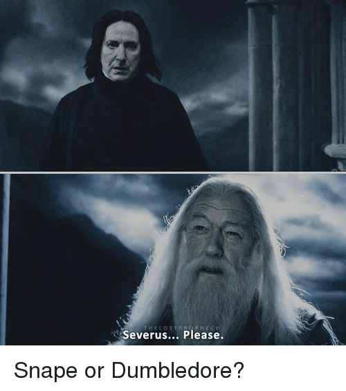 thelostprophecy severus please snape or dumbledore 18266077 thelostprophecy severus please snape or dumbledore? dumbledore,Dumbledore Meme