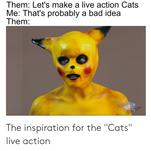 Them Let\u0027s Make a Live Action Cats Me That\u0027s Probably a Bad