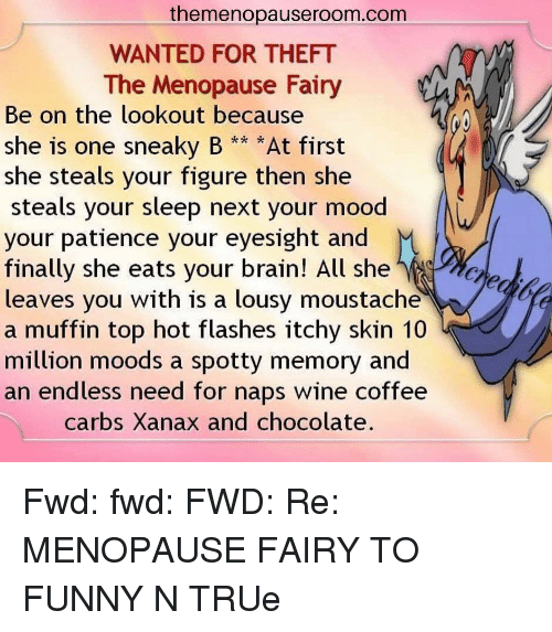 Themenopauseroomcom Wanted For Theft The Menopause Fairy Be On The Lookout Because She Is One Sneaky B At First She Steals Your Figure Then She Steals Your Sleep Next Your Mood Your