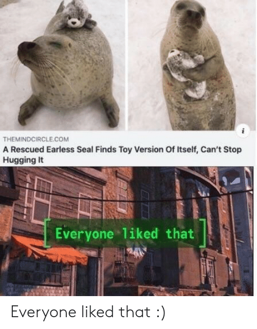 Seal, Com, and Toy: THEMINDCIRCLE.COM  A Rescued Earless Seal Finds Toy Version Of Itself, Can't Stop  Hugging It  Everyone Tiked that Everyone liked that :)