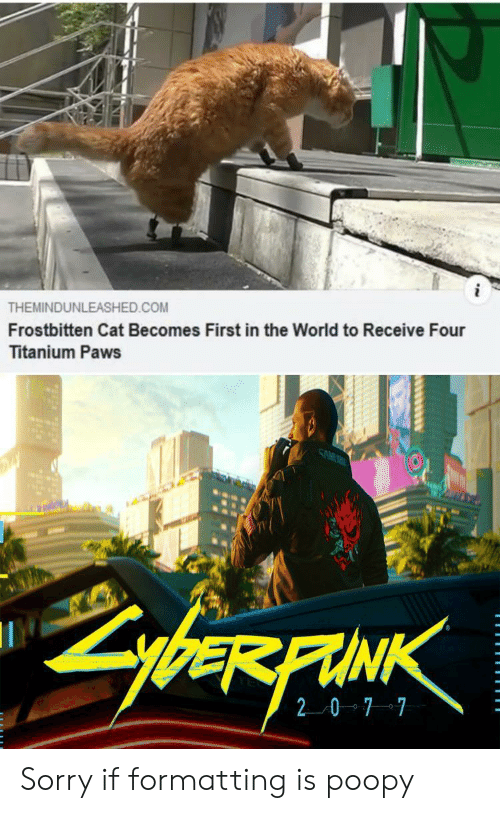 Sorry, World, and Cat: THEMINDUNLEASHED.COM  Frostbitten Cat Becomes First in the World to Receive Four  Titanium Paws  SAM  ybeRFAINK  20 7 7 Sorry if formatting is poopy