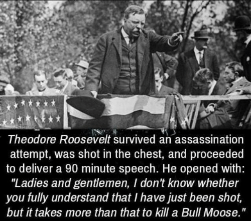 "Assassination, Been, and Moose: Theodore Roosevelt survived an assassination  attempt, was shot in the chest, and proceeded  to deliver a 90 minute speech. He opened with:  ""Ladies and gentlemen, I don't know whether  you fully understand that I have just been shot,  but it takes more than that to kill a Bull Moose."""