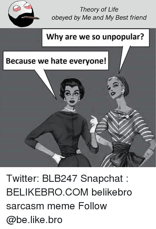 Be Like, Best Friend, and Life: Theory of Life  obeyed by Me and My Best friend  Why are we so unpopular?  Because we hate everyone! Twitter: BLB247 Snapchat : BELIKEBRO.COM belikebro sarcasm meme Follow @be.like.bro