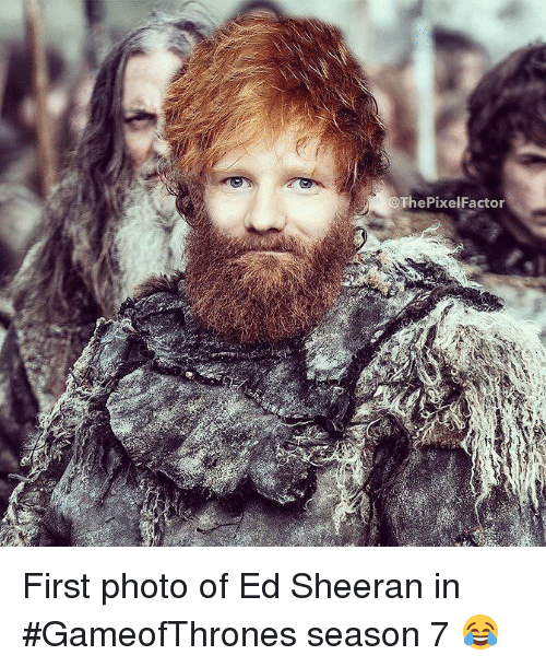 Best Memes About Ed Sheeran Ed Sheeran Memes - 17 hilarious reactions to ed sheeran appearing in game of thrones