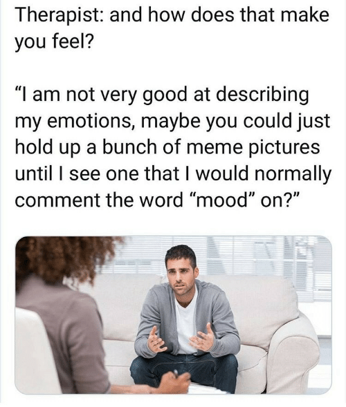 """Meme, Mood, and Good: Therapist: and how does that make  you feel?  """"I am not very good at describing  my emotions, maybe you could just  hold up a bunch of meme pictures  until I see one that I would normally  comment the word """"mood"""" on?"""""""