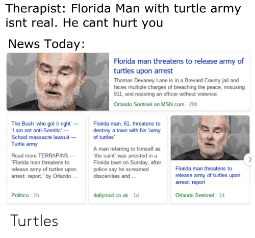 Therapist Florida Man With Turtle Army Isnt Real He Cant