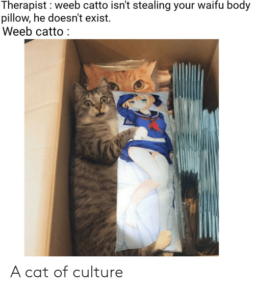 Therapist Weeb Catto Isn T Stealing Your Waifu Body Pillow He Doesn