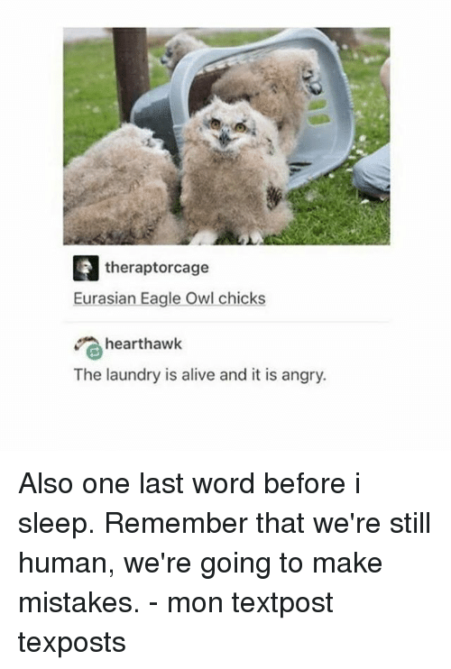 Alive, Laundry, and Memes: theraptorcage  Eurasian Eagle Owl chicks  hearthawk  The laundry is alive and it is angry. Also one last word before i sleep. Remember that we're still human, we're going to make mistakes. - mon textpost texposts