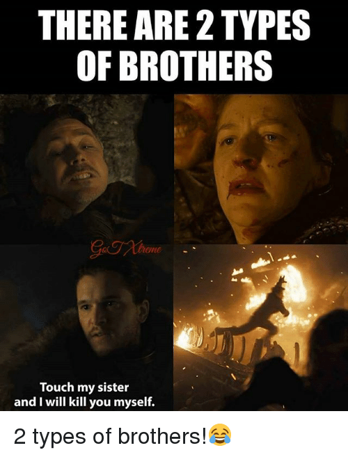 Memes, 🤖, and Brothers: THERE ARE 2 TYPES  OF BROTHERS  eme  Touch my sister  and I will kill you myself. 2 types of brothers!😂