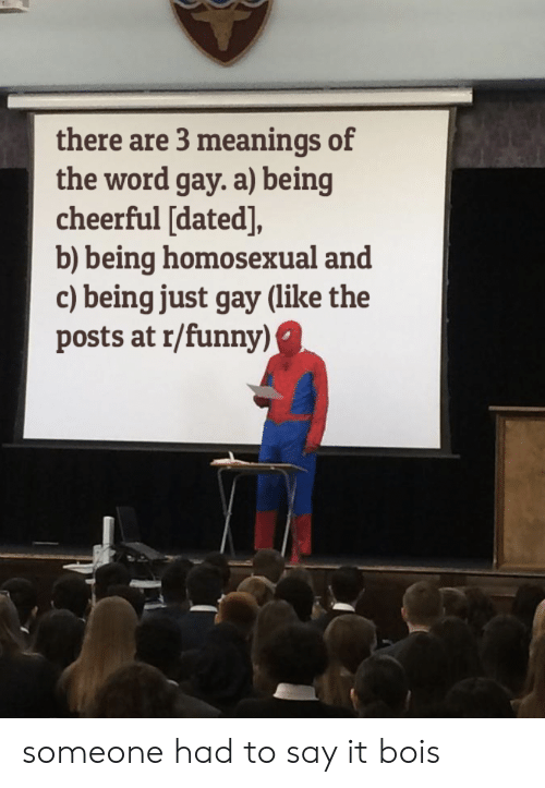 Funny, Say It, and Word: there are 3 meanings of  the word gay. a) being  cheerful [dated],  b) being homosexual and  c) being just gay (like the  posts at r/funny) someone had to say it bois