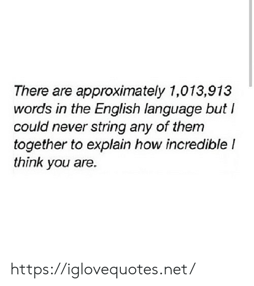 English, Never, and How: There are approximately 1,013,913  words in the English language but  could never string any of them  together to explain how incredible I  think you are. https://iglovequotes.net/
