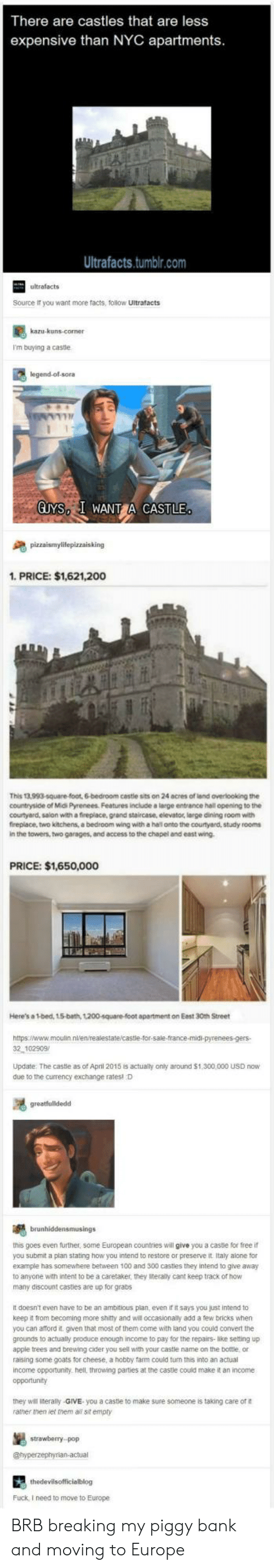 Being Alone, Anaconda, and Apple: There are castles that are less  expensive than NYC apartments  Ultrafacts.tumblr.com  ultrafacts  Source it you want more facts, follow Ultrafacts  I'm buying a castle  legend-ol-sora  GUYS I WANT CASTLE  1. PRICE: $1,621,200  This 13,993-square-foot, 6-bedroom cestle sits on 24 acres of land overlooking the  countryside of Midi Pyrenees. Features include a large entrance hall opening to the  courtyard, salon with a fireplace, grand staircase, elevator, large dining room with  fireplace, two kitchens, a bedroom wing with a hal onto the courtyard, study rooms  in the towers, two garages, and access to the chapel and east wing  PRICE: $1,650,000  Here's a 1-bed, 15-bath, 1200-square-foot apartment on Eest 30th Street  2 102909  Update The castle as of April 2015 is actualy only around $1,300,000 USD now  due to the currency exchange ratesl D  this goes even further, some European countries will give you a castle for free if  you submit a plan stating how you intend to restore or preserve it Italy alone for  example has somewhere between 100 and 300 castles they intend to give away  to anyone with intent to be a caretaker, they iteraly cant keep track of how  many discount casties are up for grabs  It doesn't even have to be an ambitious plan, even it it says you just intend to  keep it from becoming more shitty and will occasionally add a few bricks when  you can aford it. given that most of them come with land you could convert the  grounds to actually produce enough income to pay for the repairs-like setting up  apple trees and brewing cider you sell with your castle name on the bottle or  raising some goats for cheese, a hobby farm could turn this into an actual  income opportunity. hell, throwing parties at the caste could make it an income  opportunity  they will literally-GIVE you a caste to make sure someone is taking care of  ramer men let them a sit empty  stowebery  Fuck, I need to move to Europe BRB breaking my piggy bank 