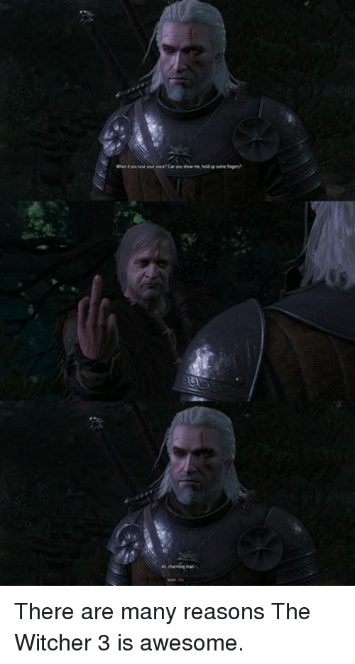 There Are Many Reasons the Witcher 3 Is Awesome | Meme on ME ME