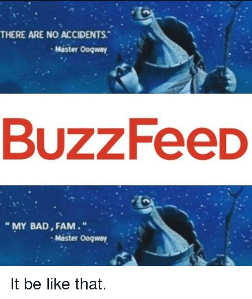 There Are No Accidents Master Oogway Buzzfeed My Bad Fam Master