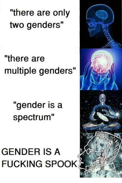 there are only two genders there are multiple genders gender 17100685 there are only two genders there are multiple genders gender is a
