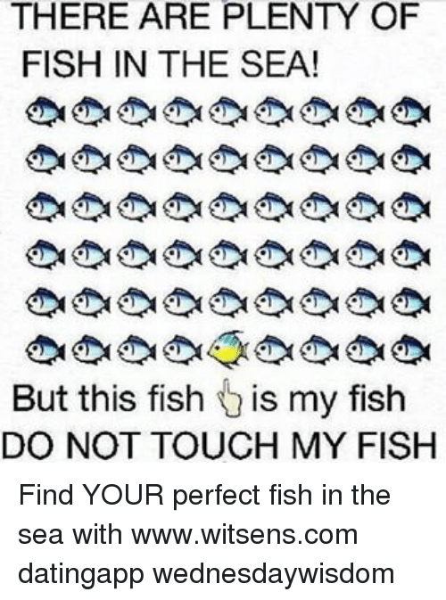 there are plenty of fish in the sea but this fish is my fish do not