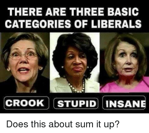 Memes, 🤖, and Basic: THERE ARE THREE BASIC  CATEGORIES OF LIBERALS  CROOK STUPID INSANE Does this about sum it up?