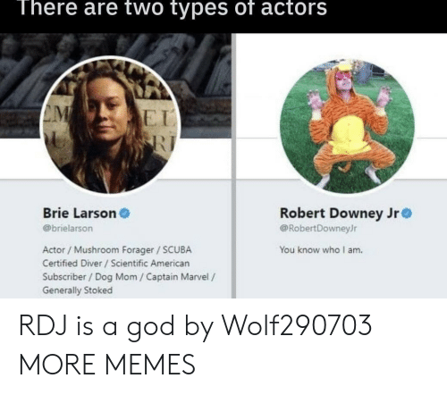 Dank, God, and Memes: There are two types of actors  E I  Brie Larson  @brielarson  Robert Downey Jr  @RobertDowneyJr  Actor / Mushroom Forager SCUBA  Certified Diver /Scientific American  Subscriber/ Dog Mom / Captain Marvel /  Generally Stoked  You know who I am. RDJ is a god by Wolf290703 MORE MEMES