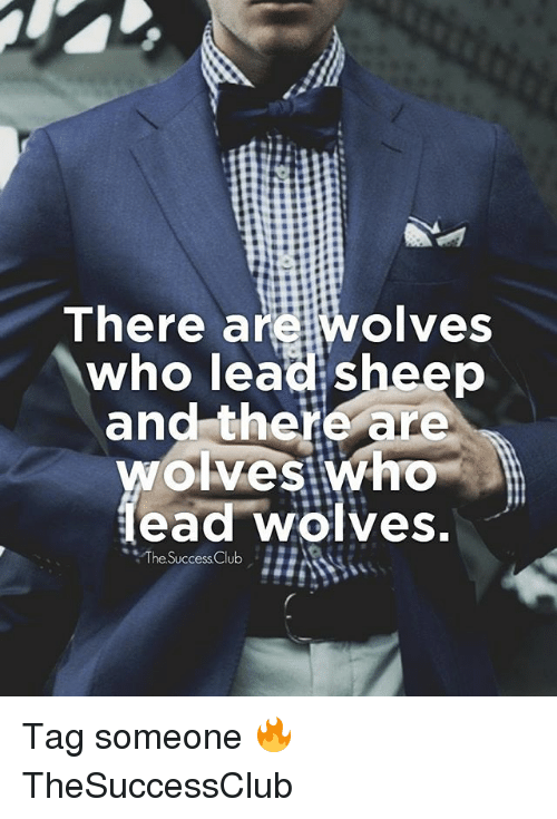 """Memes, Tag Someone, and Wolves: There are wolves  who lead sheep  and there are  ead wölves  """"The.SuccessClub Tag someone 🔥 TheSuccessClub"""