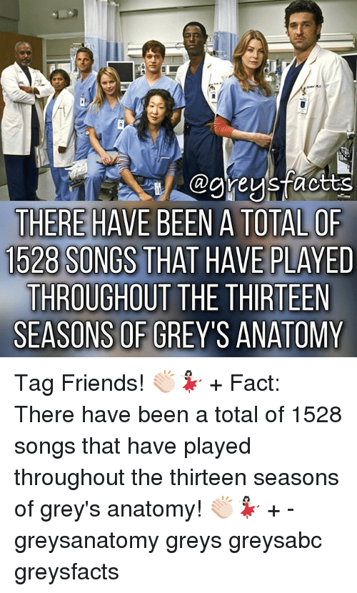 Friends, Memes, and Grey's Anatomy: THERE HAVE BEEN A TOTALOF  1528 SONGS THAT HAVE PLAYED  THROUGHOUT THE THIRTEEN  SEASONS OF GREY'S ANATOMY Tag Friends! 👏🏻💃🏻 + Fact: There have been a total of 1528 songs that have played throughout the thirteen seasons of grey's anatomy! 👏🏻💃🏻 + - greysanatomy greys greysabc greysfacts