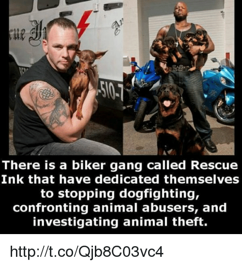 there is a biker gang called rescue ink that have 11304639 ✅ 25 best memes about biker gangs biker gangs memes,Biker Gang Meme